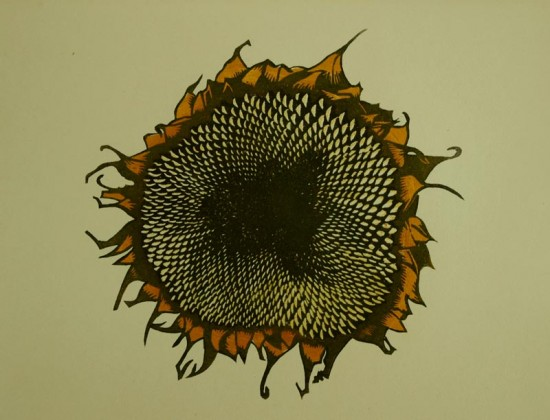 Sunflower woodcut