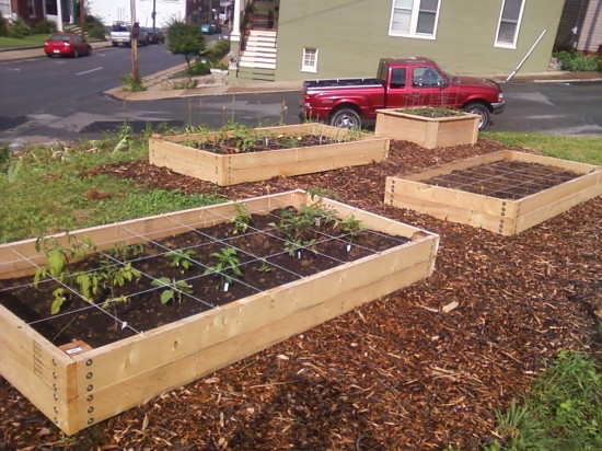 Raised beds for the garden DIY or using a kit Transition Voice