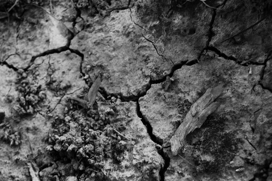 dried mud in drought